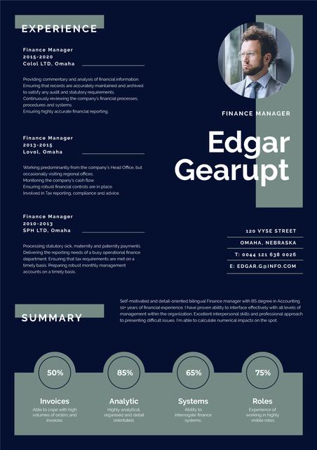 Template di design Finance Manager Professional profile Resume