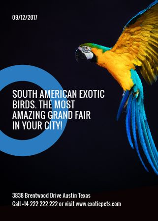 Exotic Birds fair Blue Macaw Parrot Flayer Tasarım Şablonu