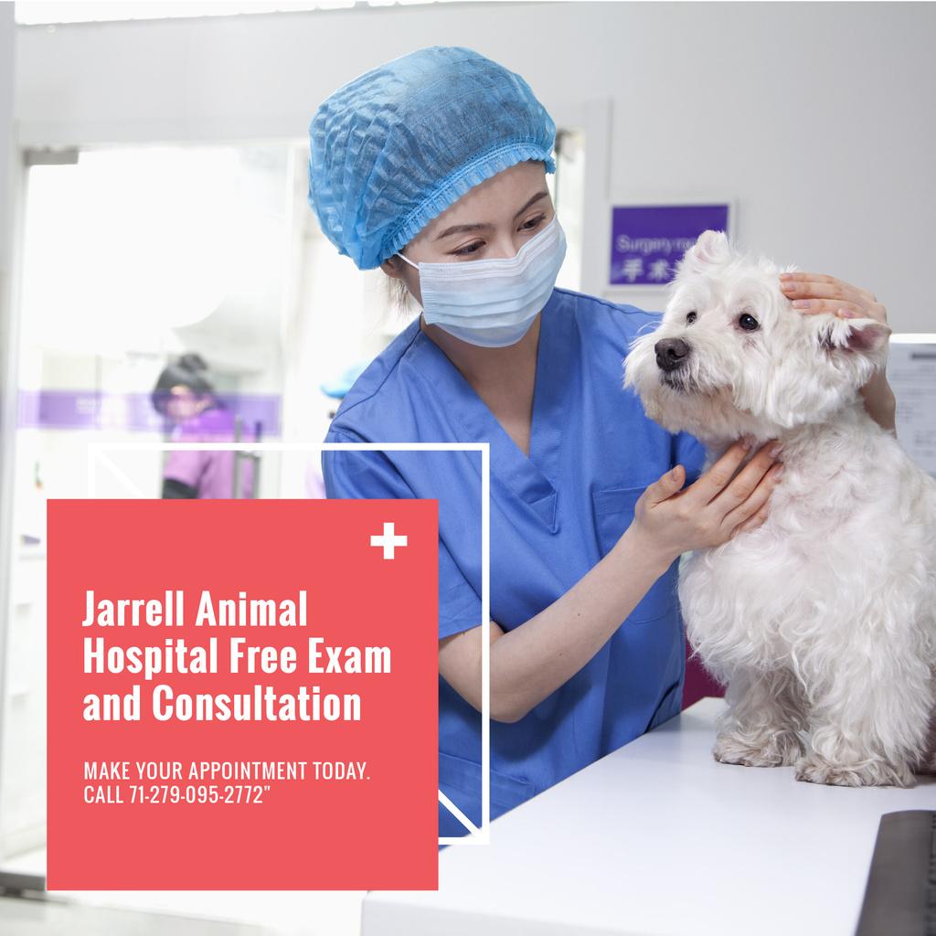 Jarrell Animal Hospital — ein Design erstellen