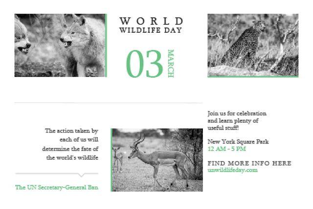 World wildlife day Gift Certificate – шаблон для дизайна