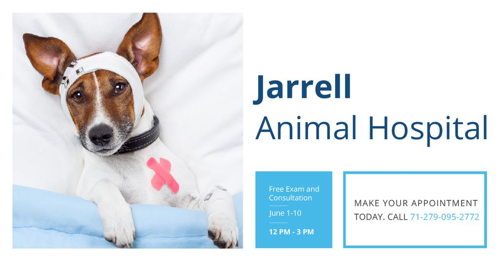 Dog in Animal Hospital Facebook AD – шаблон для дизайну