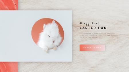 Cute Easter bunny Full HD video Modelo de Design