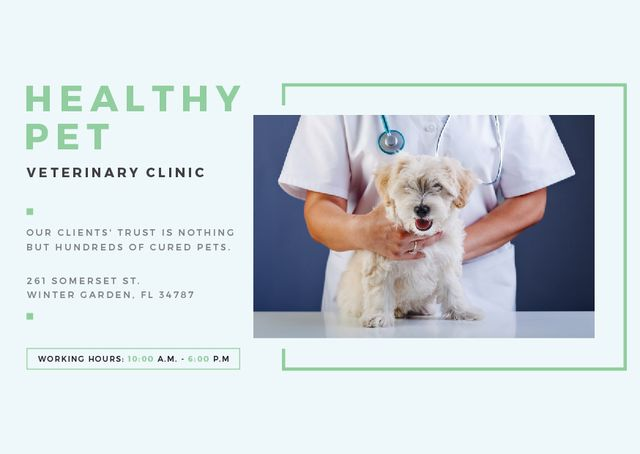 Pet in Veterinary Clinic Card Modelo de Design