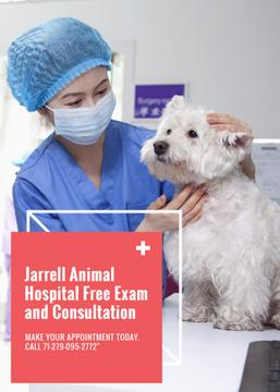 Animal Hospital Promotion Vet with Dog