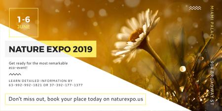 Plantilla de diseño de Nature Expo Announcement with Blooming Daisy Flower Twitter