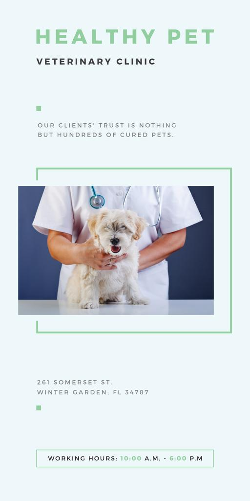 Healthy pet veterinary clinic — Create a Design