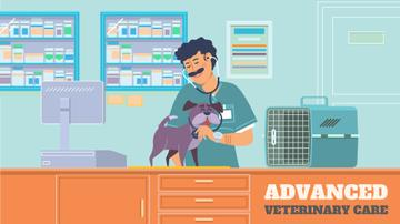 Vet taking care of dog