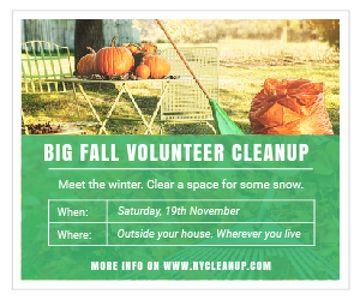 Big fall volunteer cleanup