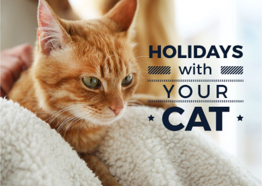 Holidays with your cat poster with red cat — Create a Design