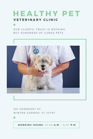 Vet Clinic Ad Doctor Holding Dog Tumblr – шаблон для дизайну