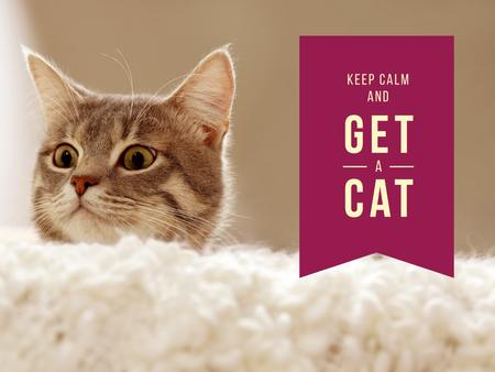 Pet Quote with Cute Cat Presentationデザインテンプレート