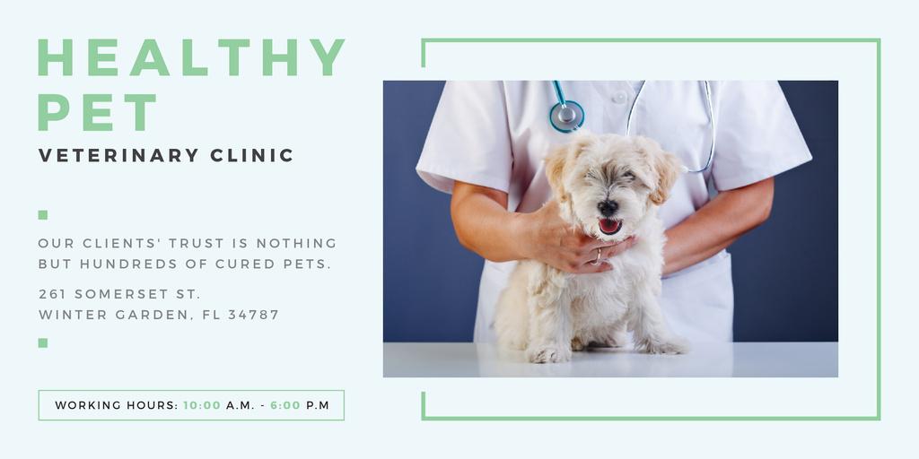 Healthy pet veterinary clinic — Créer un visuel