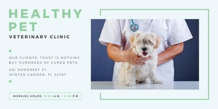 Healthy pet veterinary clinic Twitter – шаблон для дизайну