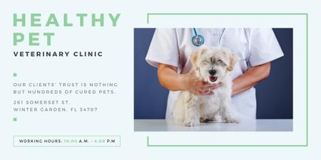 Healthy pet veterinary clinic Twitter Tasarım Şablonu