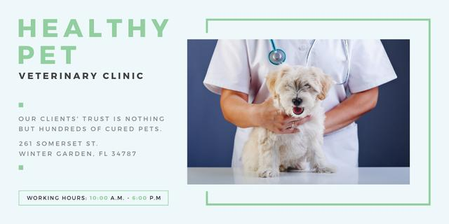 Healthy pet veterinary clinic Twitter – шаблон для дизайну