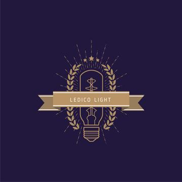 Light Bulb Icon in Brown