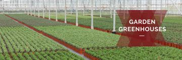 Farming plants in Greenhouse