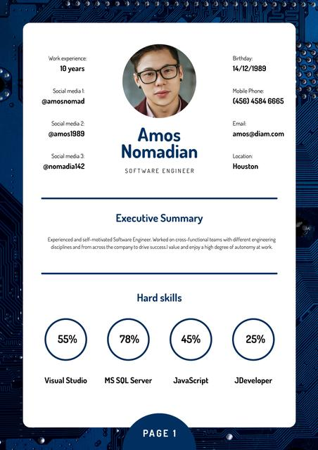 Professional Software Engineer skills and experience Resume – шаблон для дизайну