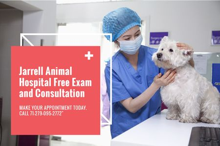 Dog in Animal Hospital Gift Certificate – шаблон для дизайна