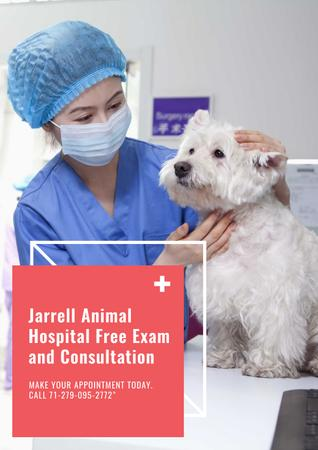 Dog in Animal Hospital Poster Modelo de Design