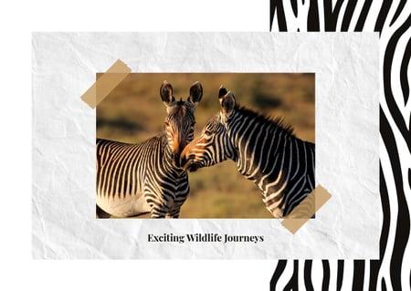 Designvorlage Wild zebras in nature für Postcard