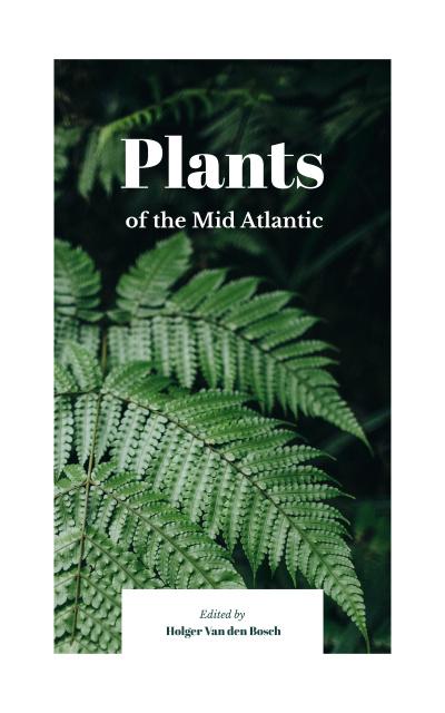 Szablon projektu Green fern leaves  Book Cover