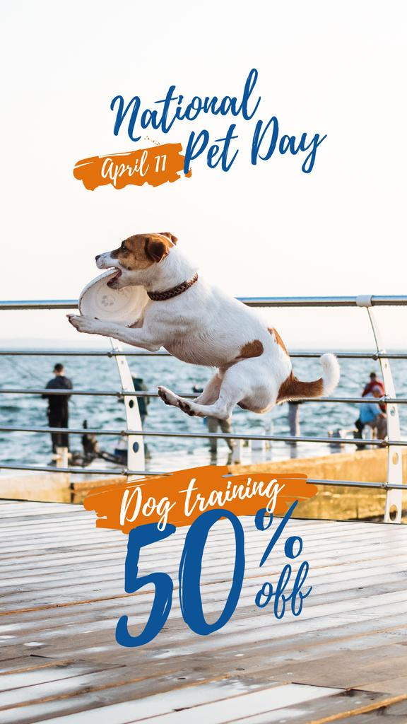 Pet Day Offer Jack Russell Playing Flying Disc Instagram Story Design Template