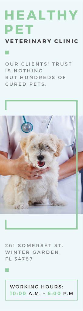 Healthy pet veterinary clinic — Crear un diseño