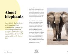 Facts about elephant brains