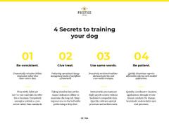 Secrets of successful puppy training