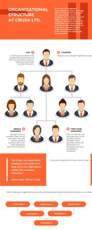 Modèle de visuel Business Infographics about Organizational Structure - Infographic