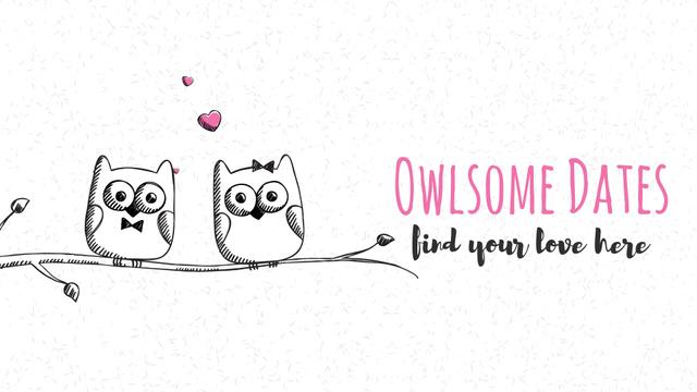 Owls in love sitting on branch Full HD video – шаблон для дизайну