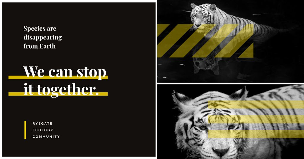Fauna Protection Wild Tiger Animal | Facebook Ad Template — Create a Design