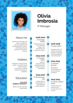 Professional IT Manager profile