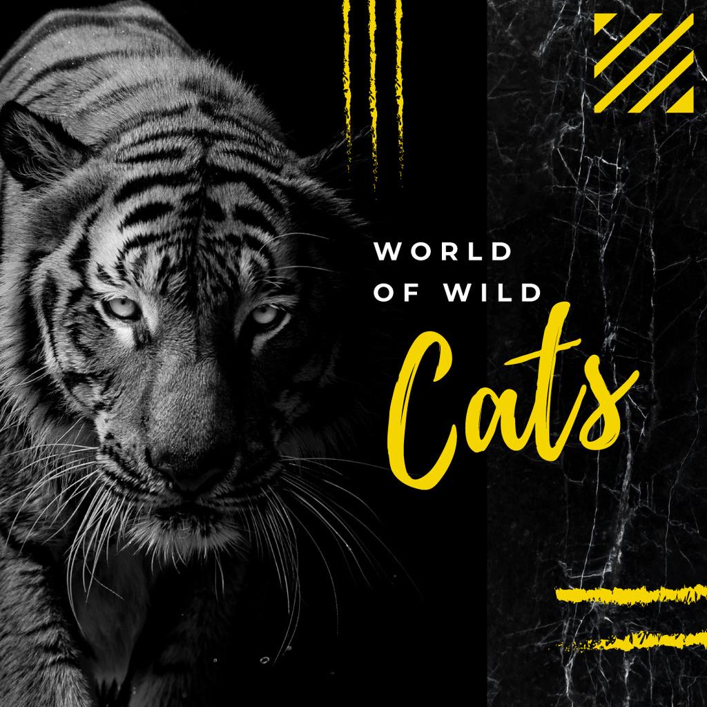 Wild tiger animal — Modelo de projeto