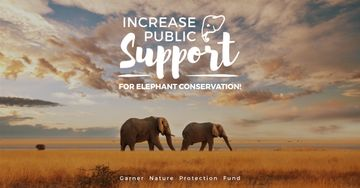 Increase public support for elephant conservation poster