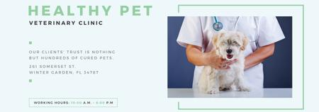 Vet Clinic Ad Doctor Holding Dog Tumblr Modelo de Design