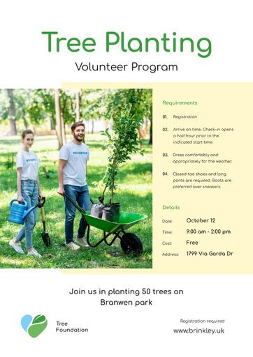 Volunteer Program Team Planting Trees