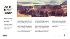 Wildlife Landscape with Scenic Rock