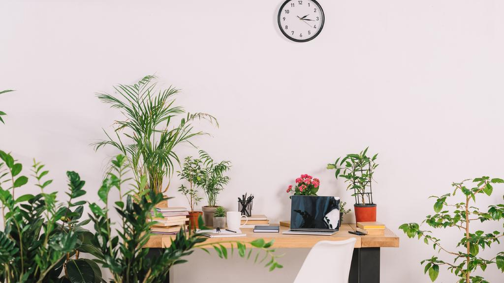 Cozy Home Workplace with vases of Flowers — Crear un diseño