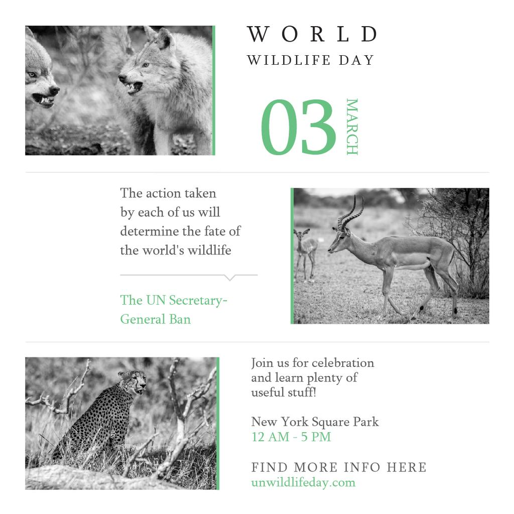 World wildlife day with Animals in Natural habitat Instagram – шаблон для дизайна