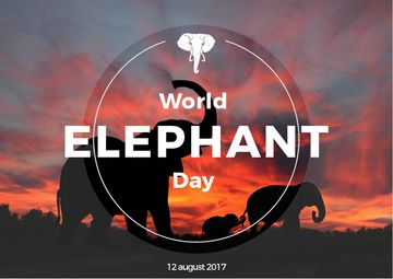 World elephant day with Elephants on Sunset