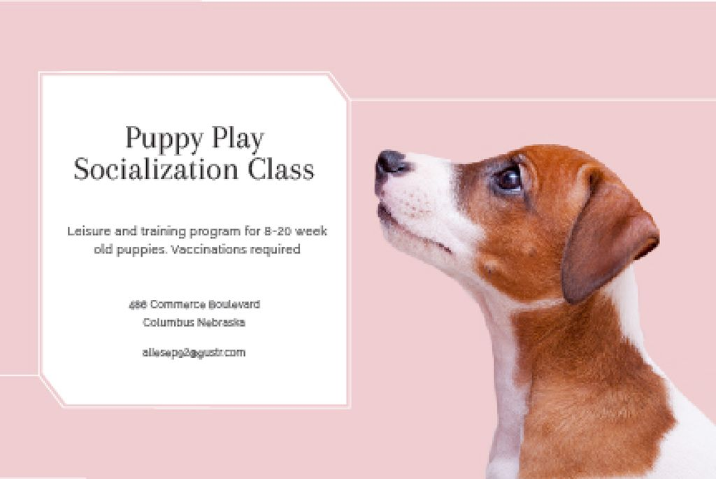 Plantilla de diseño de Puppy play socialization class Gift Certificate