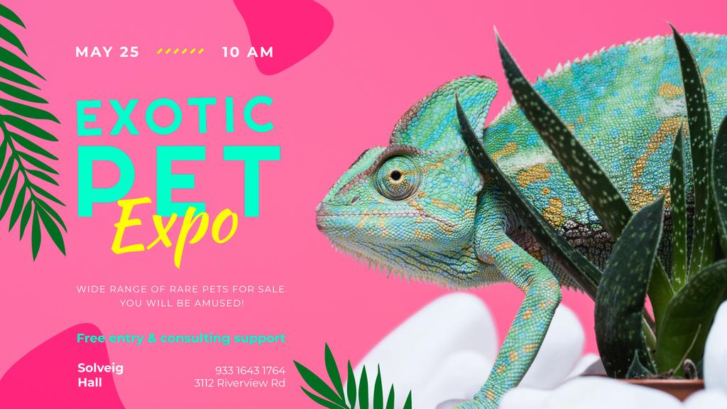Exotic Pets Expo with Chameleon Lizard — Створити дизайн