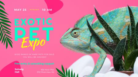 Exotic Pets Expo with Chameleon Lizard FB event cover – шаблон для дизайну