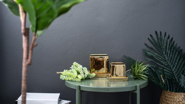 Plantilla de diseño de Home Decor Vases and Plants Zoom Background