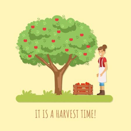 Ontwerpsjabloon van Animated Post van Woman harvesting apples