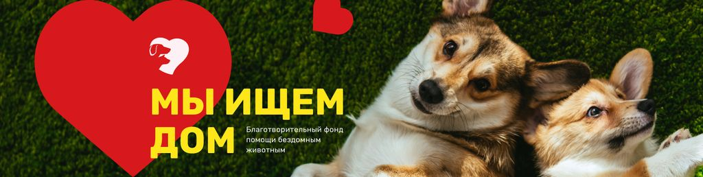 Pet Adoption Center Promotion Funny Dogs — Modelo de projeto
