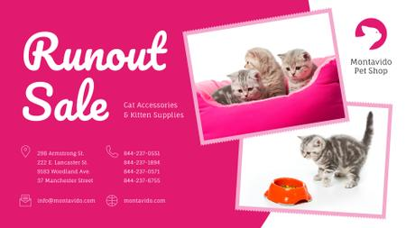 Pet Shop Sale Funny Kittens in Pink FB event cover Modelo de Design
