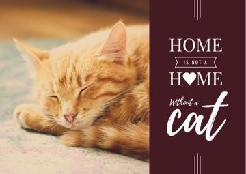 Cute Сat sleeping at Home